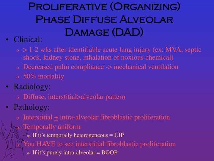 Proliferative (Organizing) Phase Diffuse Alveolar Damage (DAD)