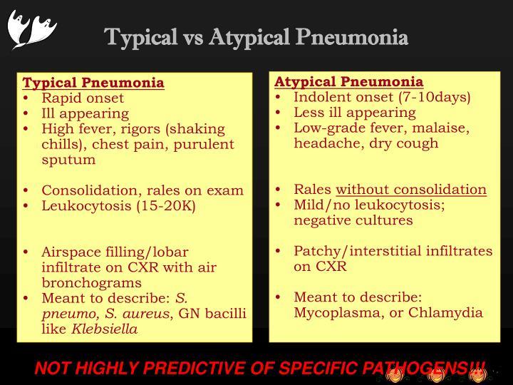 Typical Pneumonia