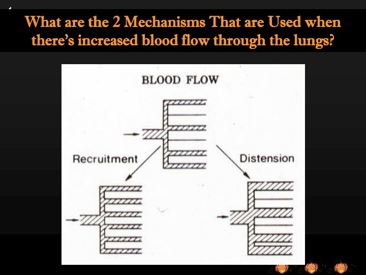 What are the 2 Mechanisms That are Used when there's increased blood flow through the lungs?