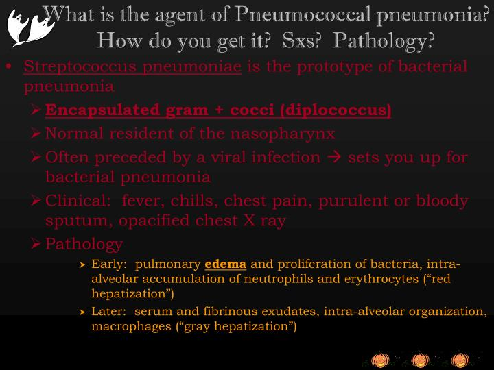 What is the agent of Pneumococcal pneumonia?  How do you get it?  Sxs?  Pathology?