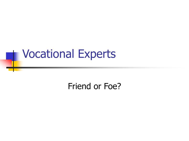 Vocational Experts