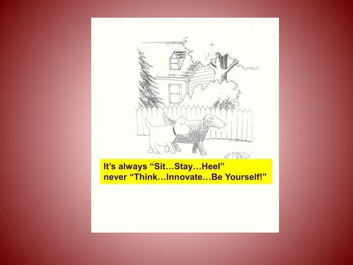 """It's always """"Sit…Stay…Heel"""""""