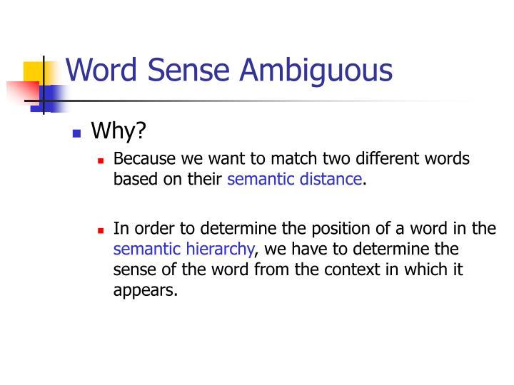 Word Sense Ambiguous