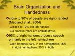 brain organization and handedness