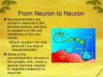 from neuron to neuron3