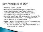 key principles of ddp