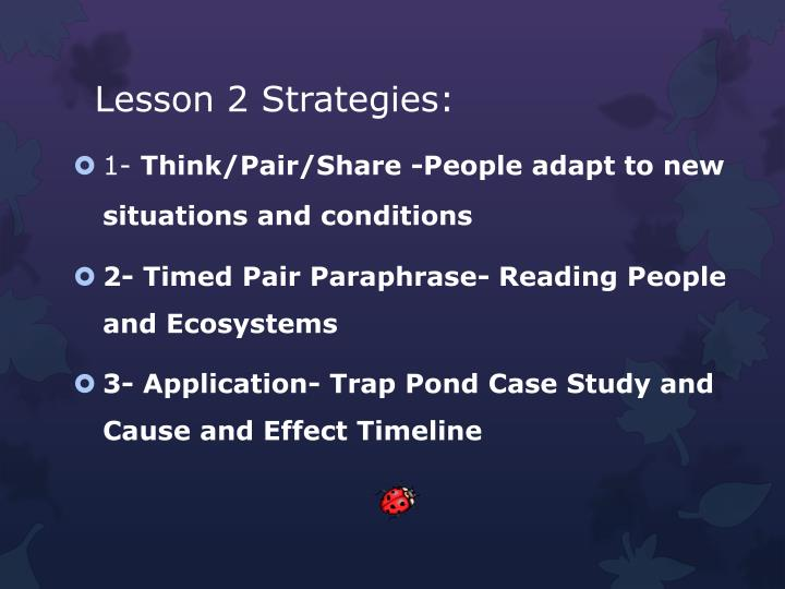 Lesson 2 Strategies: