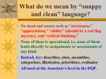 what do we mean by snappy and clean language
