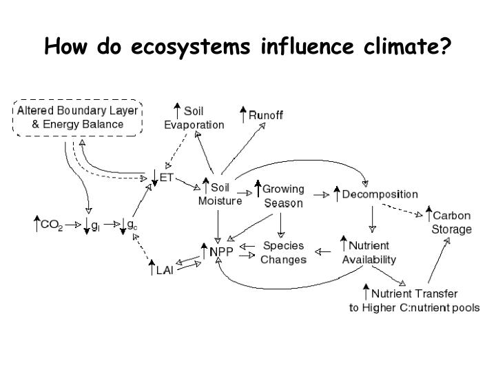 How do ecosystems influence climate?