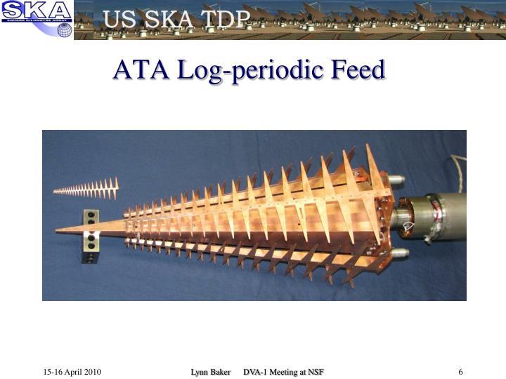 ATA Log-periodic Feed
