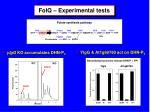folq experimental tests