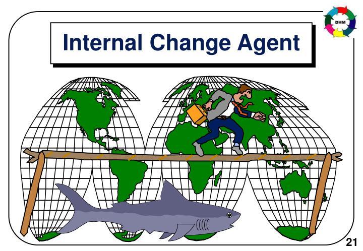 Internal Change Agent