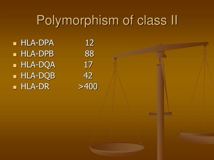 Polymorphism of class II