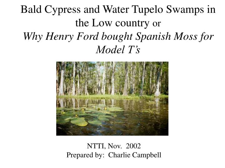 Bald Cypress and Water Tupelo Swamps in the Low country