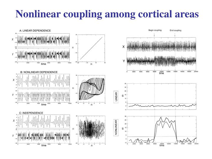Nonlinear coupling among cortical areas