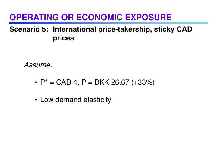 OPERATING OR ECONOMIC EXPOSURE