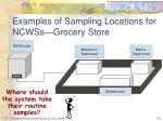 examples of sampling locations for ncwss grocery store