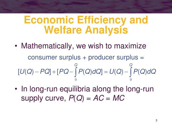 Economic Efficiency and Welfare Analysis