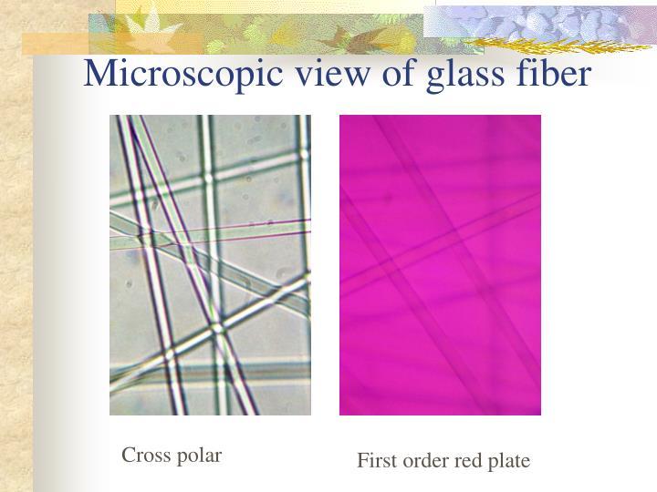 Microscopic view of glass fiber