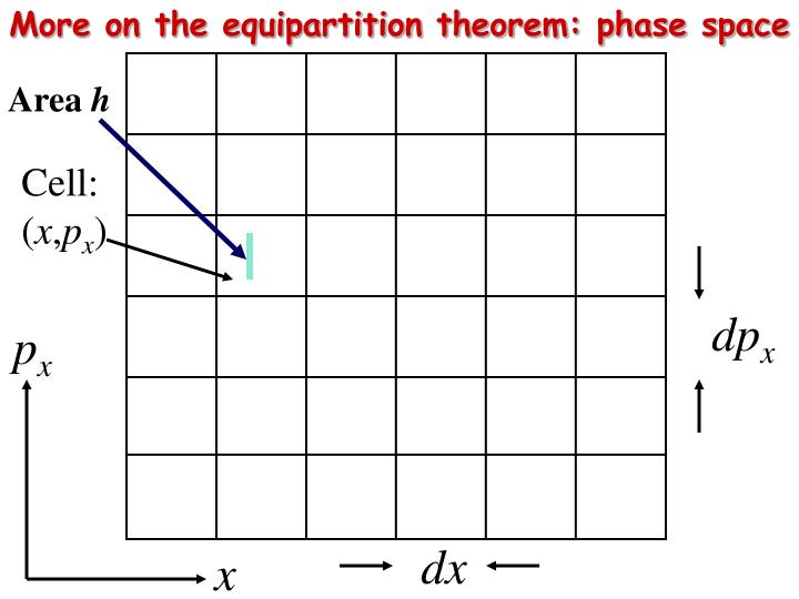 More on the equipartition theorem: phase space
