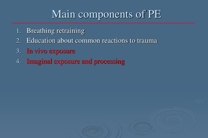 Main components of PE