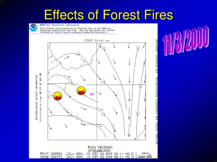 Effects of Forest Fires