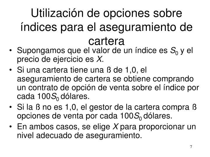 Utilización de opciones sobre índices para el aseguramiento de cartera