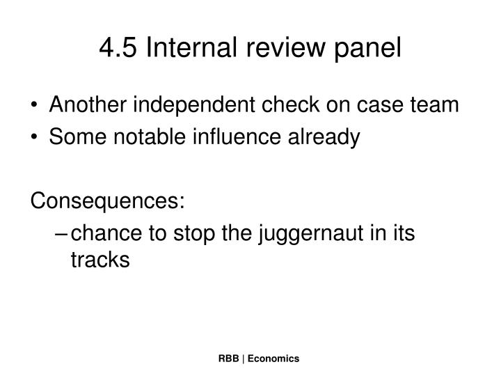 4.5 Internal review panel