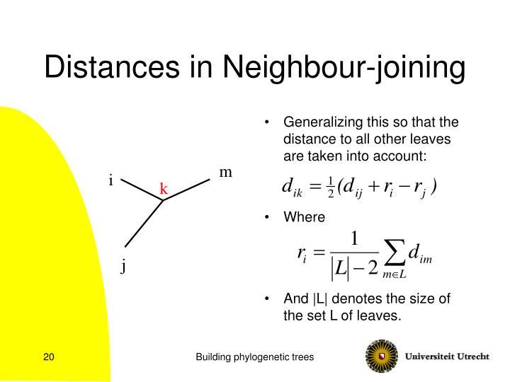 Distances in Neighbour-joining