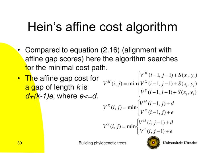 Hein's affine cost algorithm