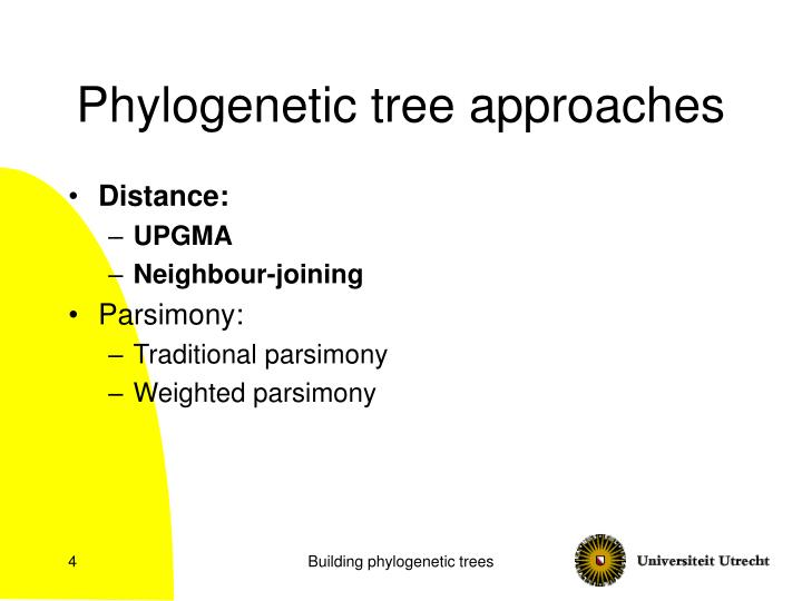 Phylogenetic tree approaches