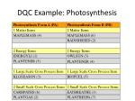 dqc example photosynthesis