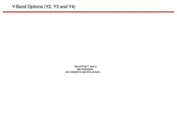 Y-Band Options (Y2, Y3 and Y4)