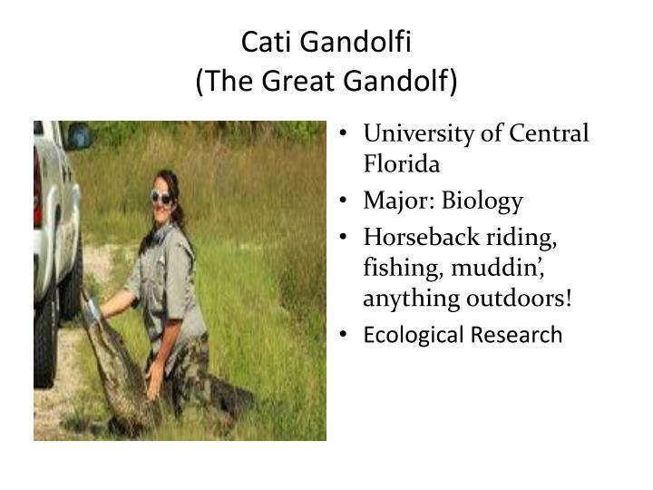 Cati Gandolfi