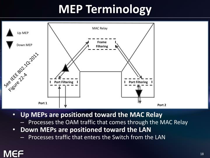 MEP Terminology