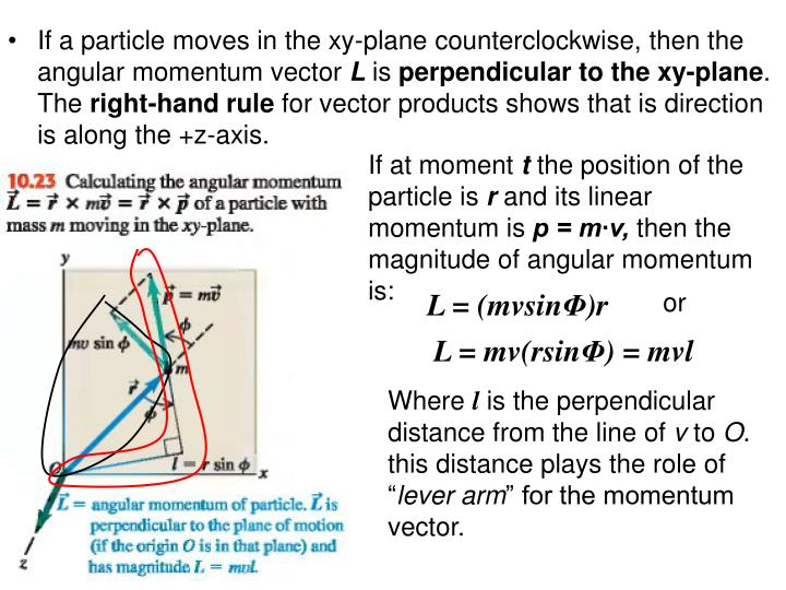If a particle moves in the xy-plane counterclockwise, then the angular momentum vector