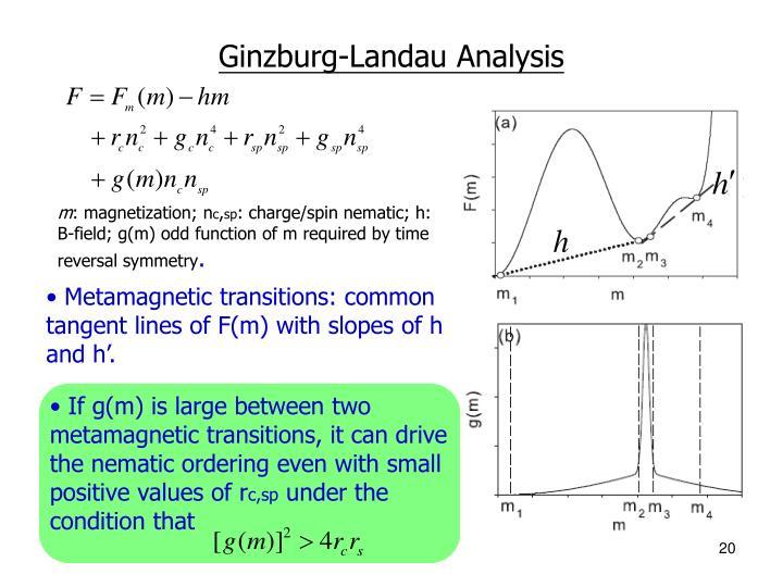 Ginzburg-Landau Analysis