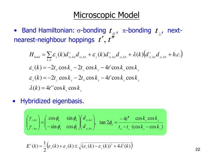 Microscopic Model