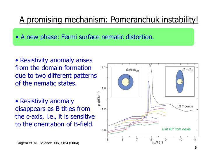 A promising mechanism: Pomeranchuk instability!