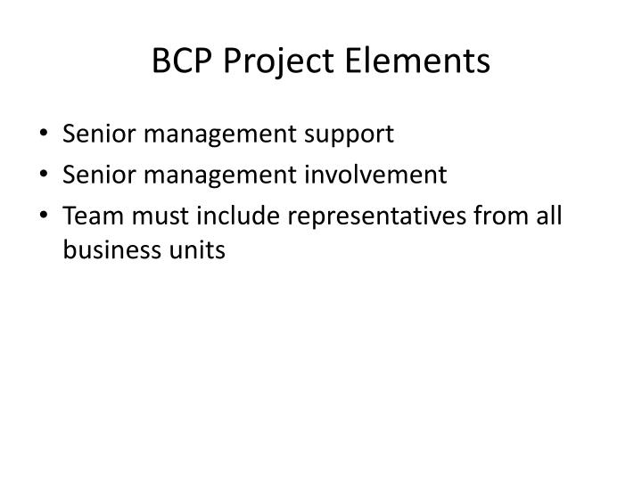 BCP Project Elements
