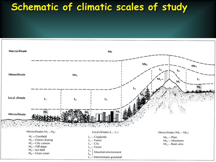 Schematic of climatic scales of study