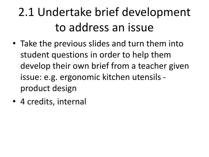 2.1 Undertake brief development to address an issue