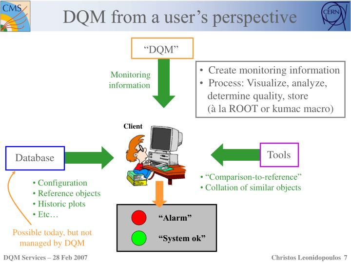 DQM from a user's perspective