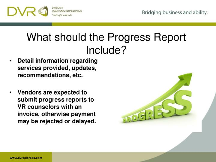 What should the Progress Report Include?