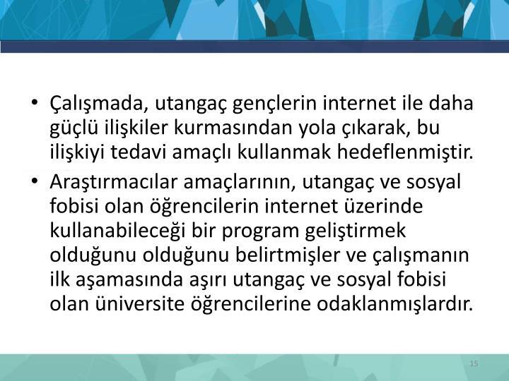 Çalışmada, utangaç gençlerin internet ile daha güçlü ilişkiler kurmasından yola çıkarak, bu ilişkiyi tedavi amaçlı kullanmak hedeflenmiştir.