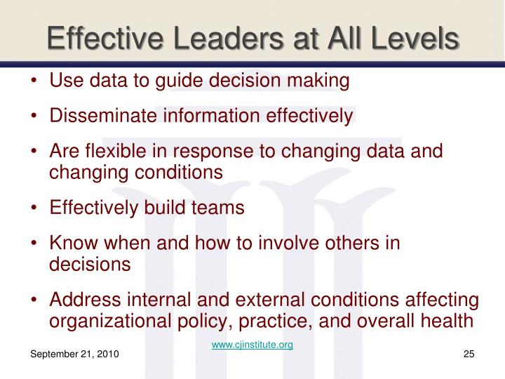 Effective Leaders at All Levels