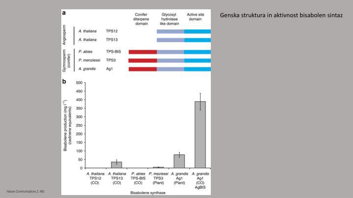 Genska struktura in aktivnost
