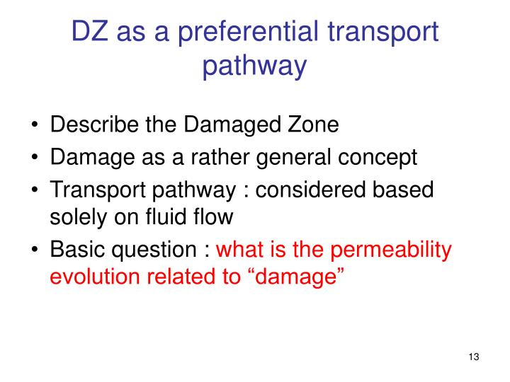 DZ as a preferential transport pathway
