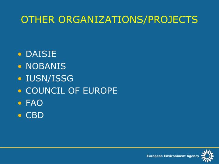 OTHER ORGANIZATIONS/PROJECTS