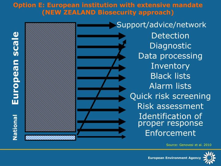 Option E: European institution with extensive mandate